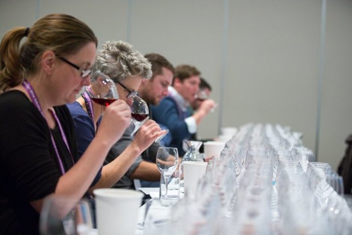 Grape Expectations The Future of Wine